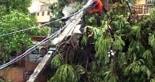 Roanu Cyclone