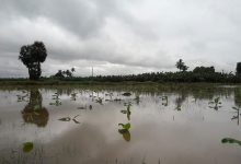 Photo of বন্যাতেও রেহাই নেই ফের প্রবল বৃষ্টির পূর্বাভাস